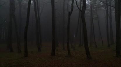 (18-자-002)자연환경_석명준01.jpg
